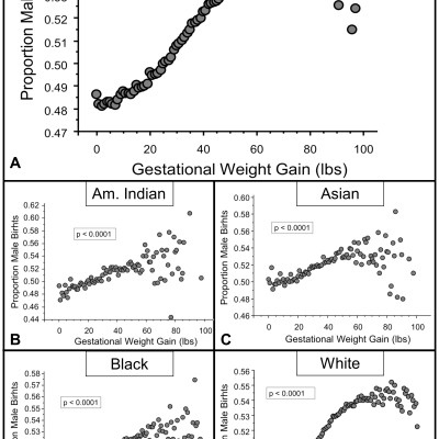 Weight Gain in Pregnancy:  Boys need more