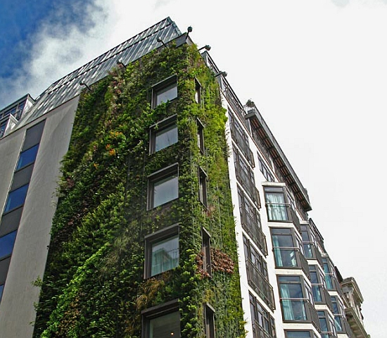 vertical garden london 2