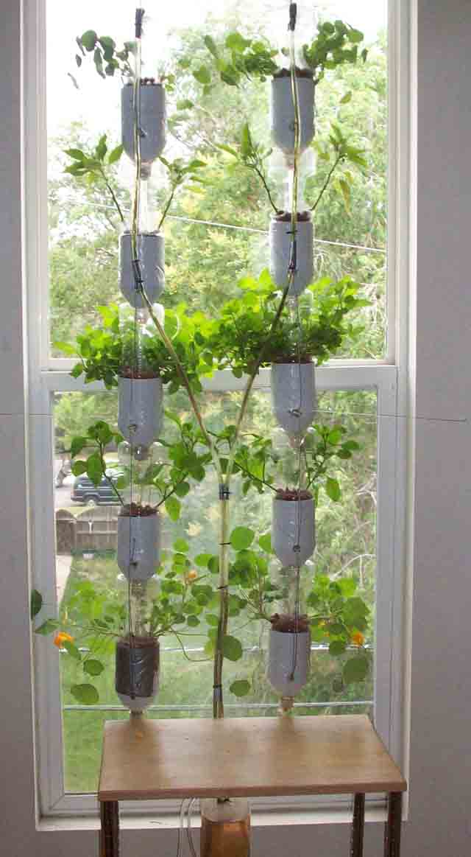 Windowfarm jard n hidrop nico para las ventanas urbanas - Jardin hidroponico ...