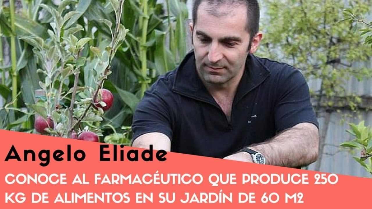 Conoce al farmacéutico que produce 250 kg de alimentos en su jardín de 60 m2