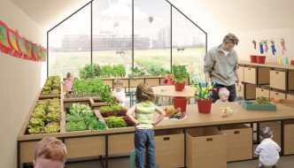 Agricultura en preescolar o como enseñar a los niños a cultivar sus propios alimentos