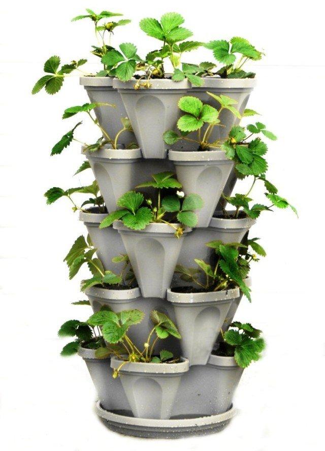 Huertos verticales el futuro de la agricultura gu a t cnica for Macetas cultivo interior