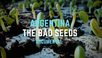 Argentina The Bad Seeds