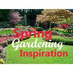 Shapely Landscape Design Ideas Your Backyard Institute Backyard Gardening Blog Your Backyard Landscape Design Ideas