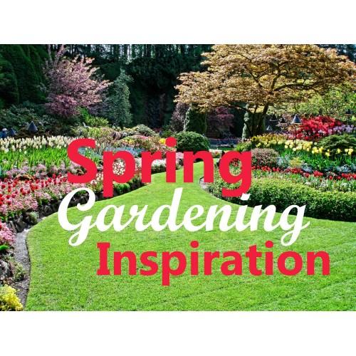 Medium Crop Of Backyard Gardening Blog