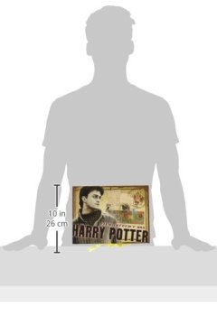 Livres Couvertures de Harry Potter Boite d'Artefact Harry Potter Noble collection