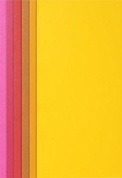 Livres Couvertures de Exacompta - Réf 217001E - Un Paquet de 10 Chemises Rigides ROCK'S 220 en Format 24x32 cm 10 Couleurs Assorties