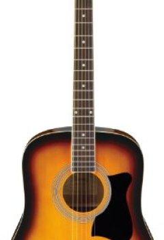 Livres Couvertures de Ibanez V50NJP-VS Jam Pack Guitare acoustique avec Kit d'accessoires Sunburst