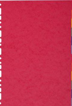 Livres Couvertures de Exacompta 1412E Intercalaire A4 Carte Lustrée 12 Positions