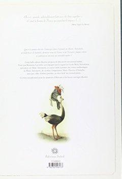 Livres Couvertures de Marie-Antoinette - Carnet secret d'une reine (NED)