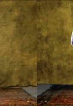 Livres Couvertures de Chevaux