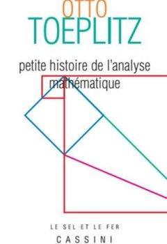 Livres Couvertures de Petite histoire de l'analyse mathématique