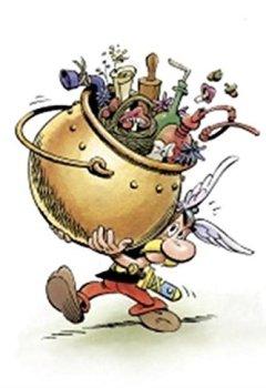 Livres Couvertures de ASTERIX - Le secret de la potion magique