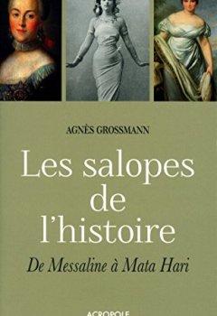 Livres Couvertures de Les salopes de l'histoire