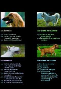 Livres Couvertures de Les chiens en 1001 photos NE