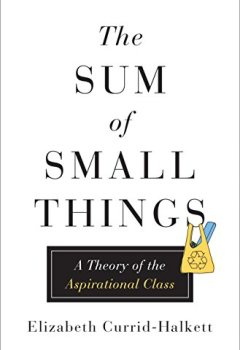 Livres Couvertures de The Sum of Small Things: A Theory of the Aspirational Class