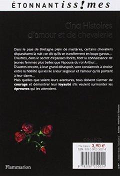 Livres Couvertures de Cinq Histoires d'amour et de chevalerie : D'après les Lais de Marie de France