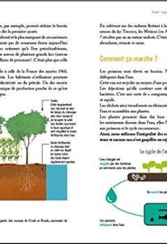 Livres Couvertures de Guide pratique de l'aquaponie - Produire ensemble légumes et poissons - Construire sa propre installation