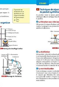 Livres Couvertures de Physique-chimie Tle S spécifique & spécialité - Prépabac Cours & entraînement: cours, méthodes et exercices de type bac (terminale S)