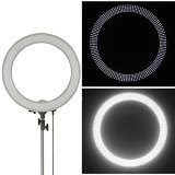 Neewer-Camera-PhotoVideo-18-48cm-Outer-55W-240PCS-LED-SMD-Ring-Light-5500K-Dimmable-Ring-Video-Light-with-Plastic-Color-Filter-Set-Universal-Adapter-with-USEUUK-Plug