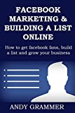 FACEBOOK MARKETING & LIST BUILDING TRAINING: How to get facebook fans, build a list and grow your business online