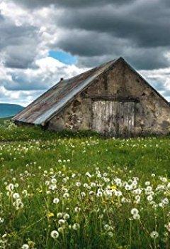 Livres Couvertures de Le Parc des Volcans d'Auvergne entre Ciel et Terre