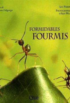 Livres Couvertures de Formidables fourmis !