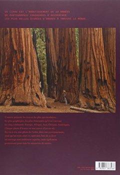 Livres Couvertures de Ecorces : Voyage dans l'intimité des arbres du monde