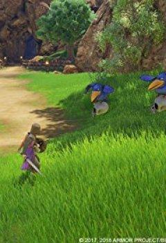 Livres Couvertures de Dragon Quest XI: Les Combattants de la destinée