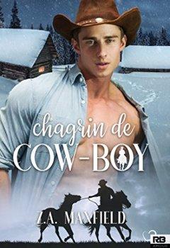 Livres Couvertures de Chagrin de cow-boy: Les cow-boys, T2