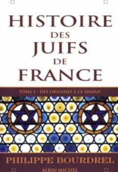 Livres Couvertures de Histoire des juifs de France, tome 1 : Des origines à la shoah
