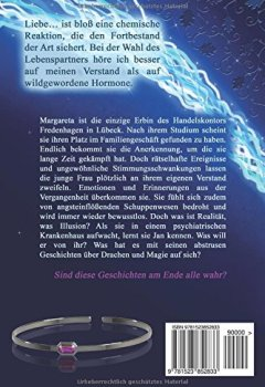 Abdeckungen Nebelsphaere - Der Zauber des Phoenix (Lübeck-Reihe, Band 1)
