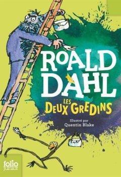 Livres Couvertures de LES DEUX GREDINS
