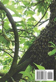 Livres Couvertures de Bien débuter en apiculture