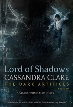 Livres Couvertures de Lord of Shadows