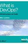 What is DevOps? (English Edition)