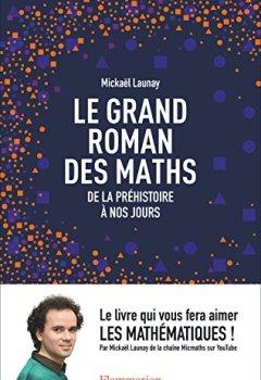 Livres Couvertures de Le grand roman des maths. De la préhistoire à nos jours