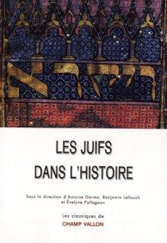 Livres Couvertures de Les juifs dans l'histoire : De la naissance du judaïsme au monde contemporain
