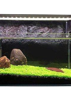 Livres Couvertures de Hanyia Aquarium Graines Eau Herbe Mini Feuille Vivre Plante Poisson Decoration Paysage Ornement