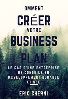 Livres Couvertures de Comment créer un Business Plan pour le présenter à des investisseurs?: Le cas d'une entreprise de conseil en développement durable et RSE.