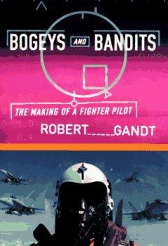 Buchdeckel von Bogeys and Bandits: The Making of a Fighter Pilot