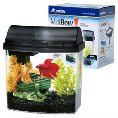 gallon mini bow aquarium kit black if you are limited to a one gallon