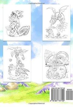 Livres Couvertures de Adult Coloring Book: Nice Little Dragons