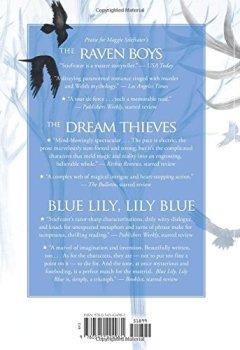Livres Couvertures de The Raven King (The Raven Cycle, Book 4)