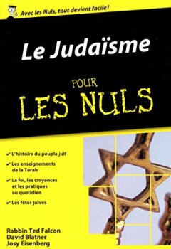 Livres Couvertures de Le Judaïsme pour les Nuls poche