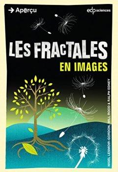 Livres Couvertures de Les fractales en images