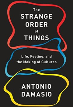 Livres Couvertures de The Strange Order of Things: Life, Feeling, and the Making of Cultures