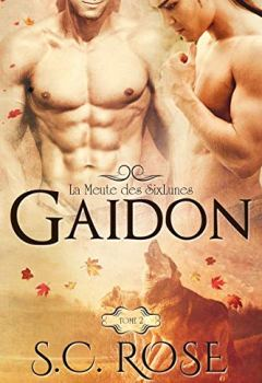 Livres Couvertures de La Meute des SixLunes, tome 2: Gaidon