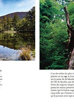 Livres Couvertures de Shinrin Yoku - L'art et la science du bain de forêt - Comment la forêt nous soigne