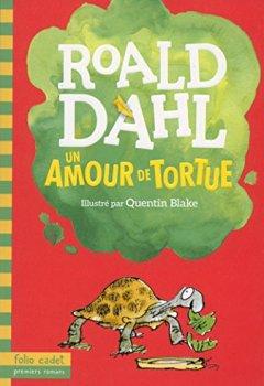 Livres Couvertures de Un amour de tortue